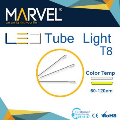 tube light T8